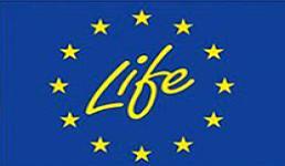 logo_life2_0